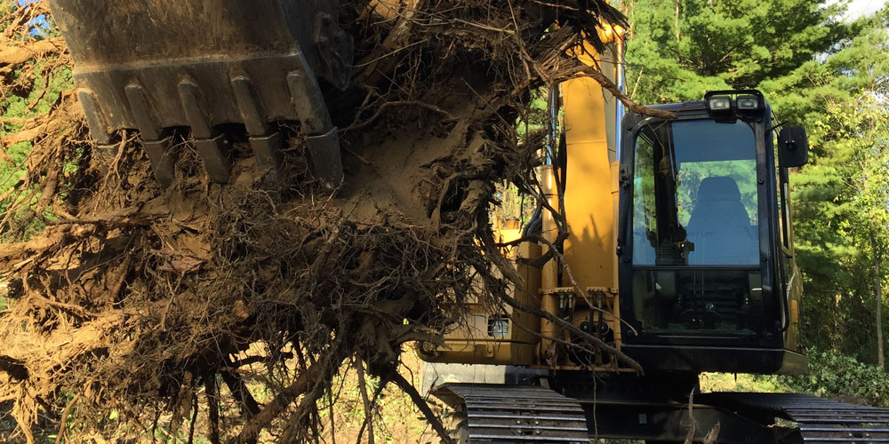 Cat 311 CU Clearing Stump Removal